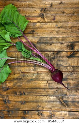 Young beet on wooden table