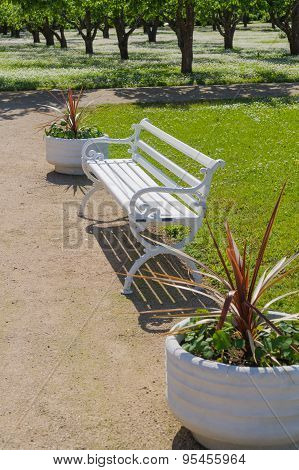 Ornate White Bench And Flower Pots, Garden On Background