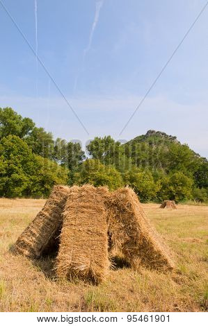 Square blocks with hay in the agriculture fields