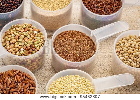 gluten free grains (quinoa, brown rice, kaniwa, amaranth, sorghum, millet, buckwheat, teff) - measuring scoops on a rustic barn wood