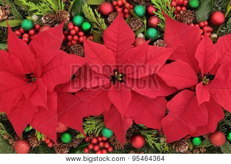 Poinsettia flower background with bauble decorations, holly, mistletoe and winter greenery.