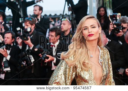 Cannes, France - May 16, 2015: Natasha Poly attends the Premiere of 'The Sea Of Trees' during the 68th annual Cannes Film Festival on May 16, 2015 in Cannes, France.