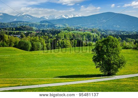 Road in pastoral idyllic german countryside with Bavarian Alps in background on beautiful summer day