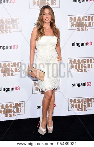 LOS ANGELES - JUN 25:  Sofia Vergara arrives to the