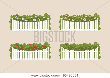 Bushes Of White Fence. Vector Illustration