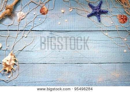 Seashells with net on blue boards background