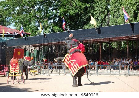 Pattaya, Thailand - September 7: The Famous Elephant Show In Nong Nooch Tropical Garden On September