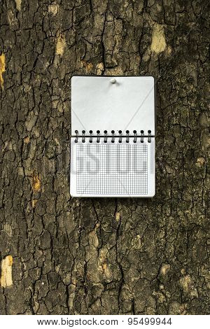 Notepad At The Bark Of Tree.
