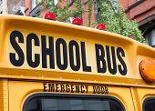 foto of rear-end  - Rear end of NYC school bus - JPG