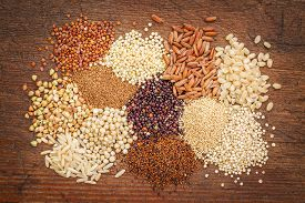 picture of millet  - gluten free grains  - JPG