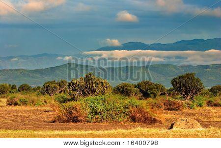 African savanna, Queen Elizabeth National Park, Uganda