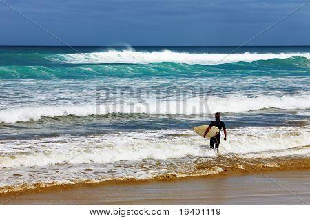 Surfer at the beach, Ninety Mile Beach, New Zealand