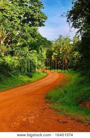 Landscape with rainforest and road, Uganda