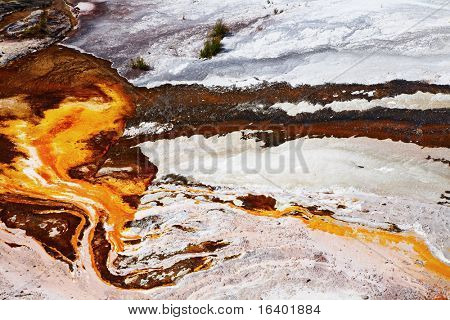 Abstract texture of hot spring, Waiotapu geothermal area, New Zealand