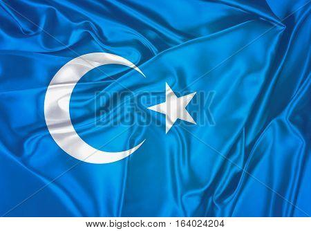 East Turkestan, East Turkestan Flag Design and Presentation