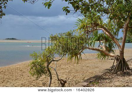 Mooloolah River