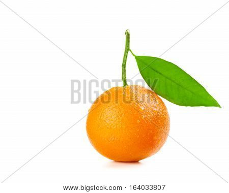 Ripe orange fruit with drops of water on the skin