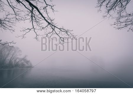 Frozen Pond With Few Trees In Cold Foggy Winter Morning