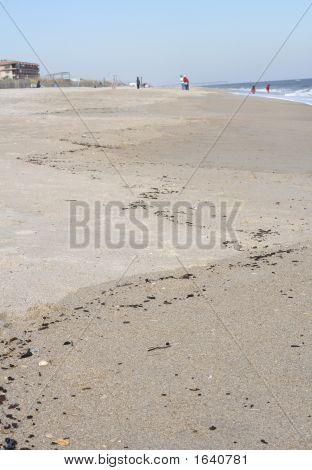 Coastline  Sand