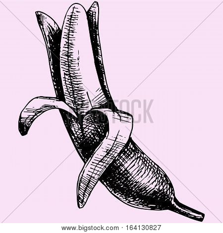 Peeled banana doodle style sketch illustration hand drawn vector