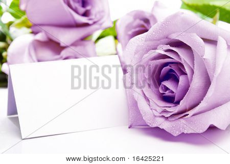 Invitation or visiting card with purple roses