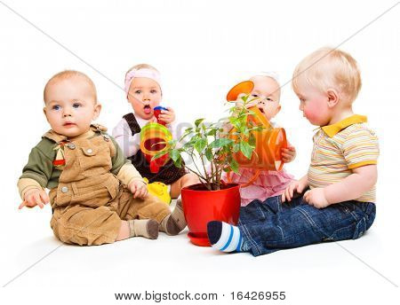 Babies group sitting around the potted plant