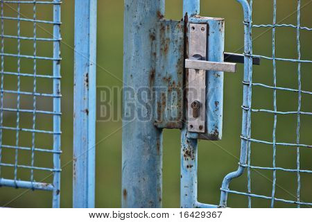 Small old blue gate on green background