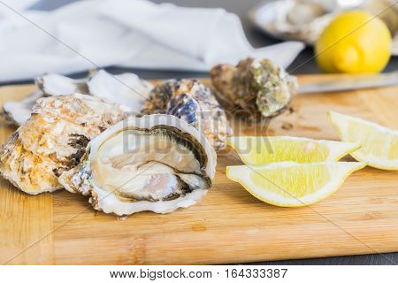 Raw oysters shells - one open and closed ones with lemons