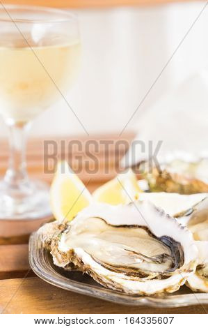 Raw fresh oysters shells and glass of white wine
