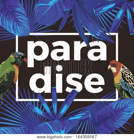 Trendy slogan Paradise in the frame. The composition of tropical banana leaves in blue night style wild birds parrot. Black background