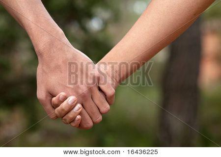 Exploração de casal de amantes as mãos em uma floresta (verão/primavera)