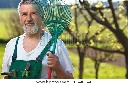 portrait of a senior man gardening in his garden (color toned image)