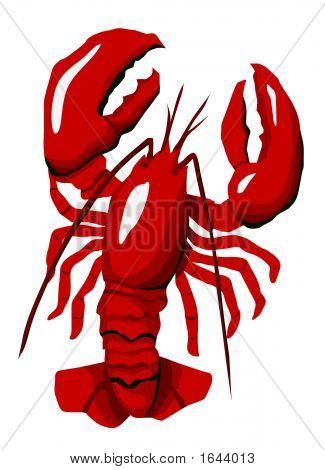 Redl Lobster