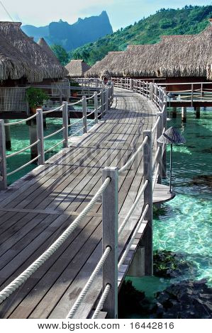 Overwater Bungalows at Sheraton Moorea
