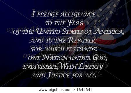 Pledge To The Usa