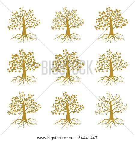 Golden decorative trees like olive and oak, ash and maple isolated on white background. Silhouette of plant with leaf and roots. Vector illustration