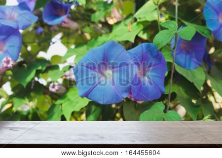 Ipomoea Purpurea Or Morning Glory Flower (blur Image) With Selected Focus Empty Wood Table For Displ