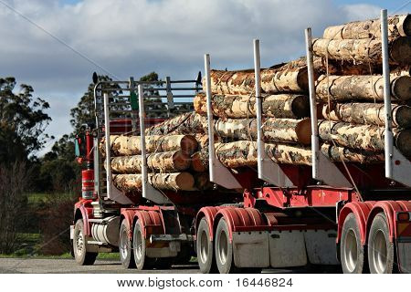 Logging Truck in Tasmania