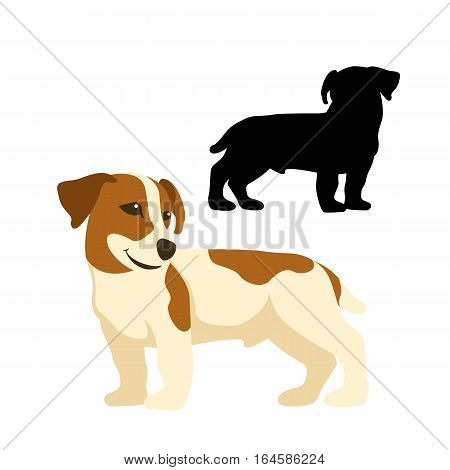 jack russell terrier  dog vector illustration style Flat