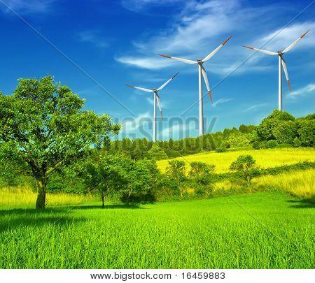 Wind turbines farm on hill in summer