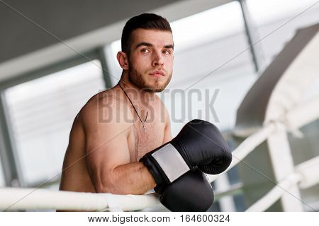 Photo of beautiful athlete in boxing ring with boxing gloves