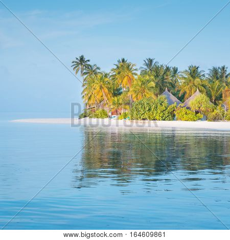 Tropical island in the Indian Ocean. White sand beach. Tropical palm trees.