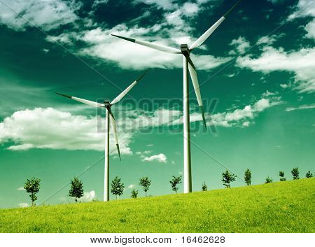 Environmental wind, global ecology
