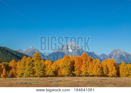 the scenic landscape of Teton National Park Wyoming in autumn