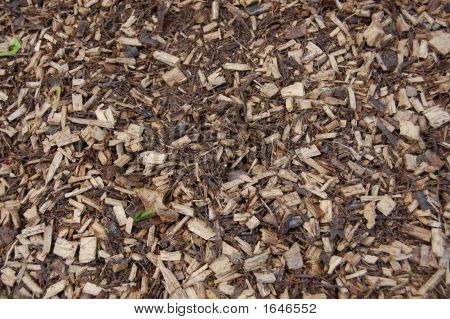 Wood Chips 1