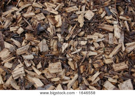 Wood Chips - Closeup 2