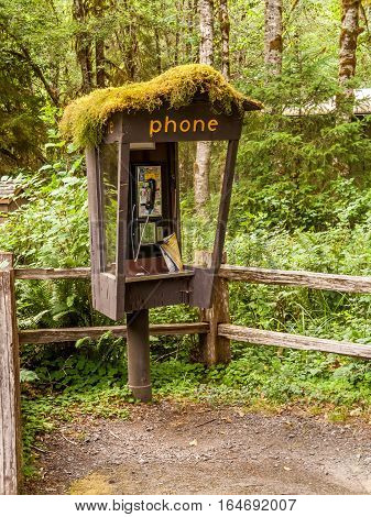 Washington State, USA : July 7, 2009 : Abandoned Phone booth into the Hoh Rain Forest, Olympic National Park, USA