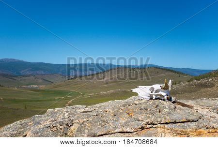 Hilly Steppe landscape, blue sky in Siberia. Baikal. Scull on the foreground
