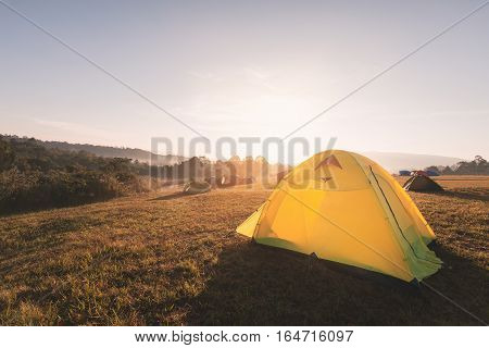 Yellow camping tent on yellow grass hill with warm sunlight from mountain and clear sky in winter season of national park