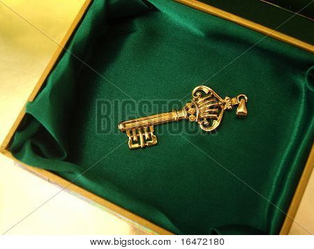 Golden key on green box